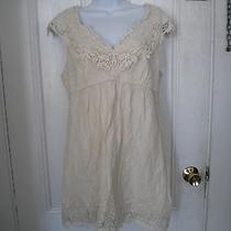 Womens Bcbg Maxazria Off White Dress -- Sz 8  Gorgeous  Photo