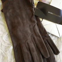 Womens Bcbg Suede Gloves New W Gift Bag Wrist Lenght Great Gift Photo