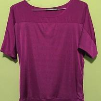 Womens Blouse Medium the Limited Photo