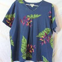 Womens Classic Elements Woman v Neck Shirt Size 16 - 18 Photo