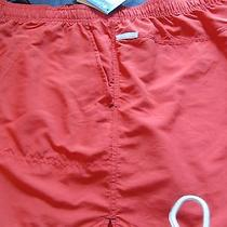 Womens Columbia Sandy River Shorts Nwt Retail 32 Photo