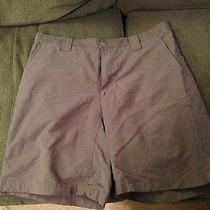 Womens Columbia Sportswear Gray Outdoor Short Size 34   Photo