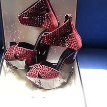 Womens Designer Shoes Photo