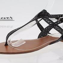 Womens Dolce Vita Black Perforated Leather Thong Sandals Sz. 6 New Photo