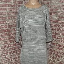 Womens Dress Express Size Large Dolman Sleeve Keyhole Drop Waist Photo