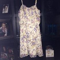 Womens Dresses Photo
