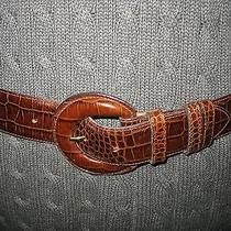 Womens Escada Italy Brown Alligator Belt and Buckle Will Fit Size 30 - 32 Photo