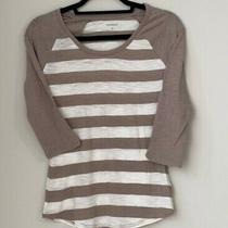 Womens Express Beige and White Striped 3/4 Sleeve Baseball T-Shirt Size Xs Photo