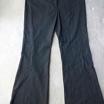 Womens Express Design Studio Editor Black Striped Dress Work Pants Size 10 Nice Photo
