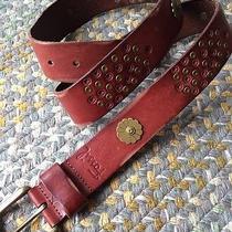 Womens Fossil Floral Stud Vine Brown Leather Belt Sz Large Photo