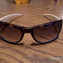 Womens Fossil Sunglass - Great Condition Photo