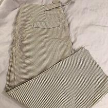 Womens Gap Capri Pants/shorts Size 8 Pinstripe Photo