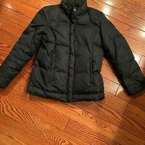 Womens Gap Xs Winter Jacket Photo