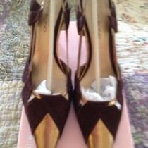 Womens Heels Photo