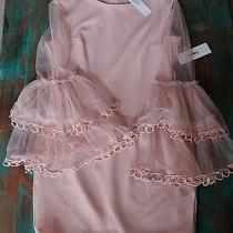 Womens Ina Blush Pink Dress M L Lace Bell Ruffle Sleeves Boutique Photo