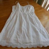 Womens/juniors Kensie   Dress  Size L Beautiful  Photo