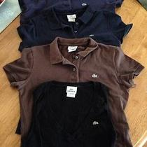 Womens Lacoste Polo Lot Photo