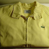 Womens Large Lacoste Sweater Photo