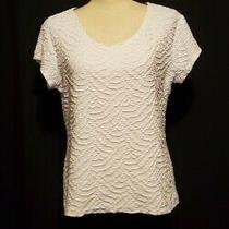 Womens Liz Claiborne Career Short Sleeve Textured Shirt Top Size Xl White Photo