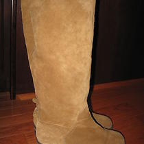 Womens Lucky Brand Addison Almond Suede Riding boots10.5 Photo
