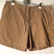 Womens Outdoor Camping/hiking Shorts by Columbia (L) Photo