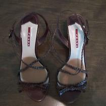 Womens Prada Shoes Photo