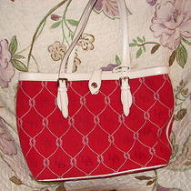 Womens Purses Photo