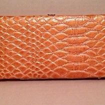 Womens Rolfs Clutch Wallet Croc Orange Photo