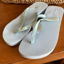 Womens Sequence Express Baby Blue Cushioned Flip Flops Sandals Nwt Size 8 Photo