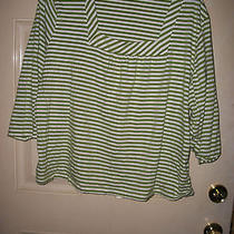 Womens Size 22/24w Green Striped Shirt Top by Classic Elements Photo