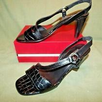 Womens Size 8m Brighton Rhodes Black Leather Ankle Strap Sandals Heels Shoes 8 M Photo