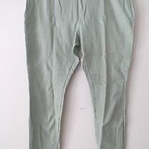 Womens Size Xl (16) Vera Wang Seafoam Green Pants Twill Stretch Leggings New 39 Photo