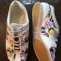 Womens Sneakers Photo