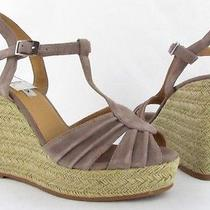Womens Steve Madden Mammbow Blush Suede Wedge Size 8.5m New Photo