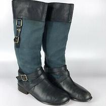 Womens Suede and Leather Knee High Boots - Navy With Gold Details Photo