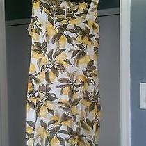Womens Summer Dress Ellen Tracy  Photo