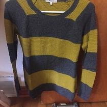 Womens Sweater Photo
