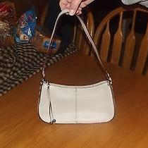 Womens the Sak Purse Photo