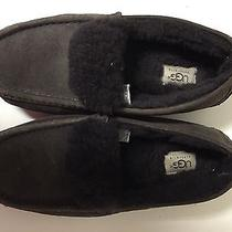 Womens Ugg Mocassin Slippers Photo