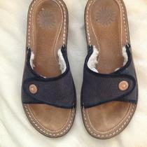 Womens Ugg Sandals Size 7 Photo