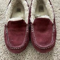 Womens Ugg Slippers Size 8 Photo