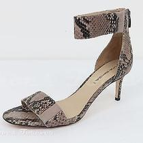 Womens via Spiga Python Print Leather Strappy Sandals Heels Sz. 8.5 New Photo