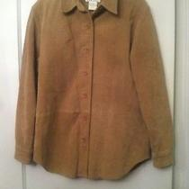 Womens Vtg Bagatelle Suede Shirt/blazer /jacket Sz 6 Nice Vintage Condition Photo