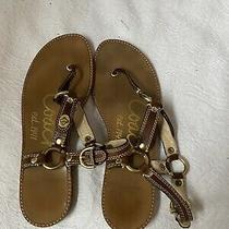 Womnes Coach Sandals Size 8 Euc Photo