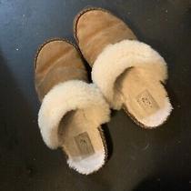 Worn Womens Ugg Slippers Size 8 Photo
