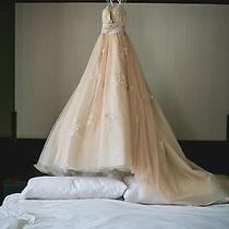 Wtoo by Watters Oriana Wedding Gown Dress Blush Champagne Colored 2 4 6 Photo