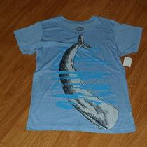 Young Men's T-Shirt Call Your Mother Size S Blue Whale Nwt  Photo