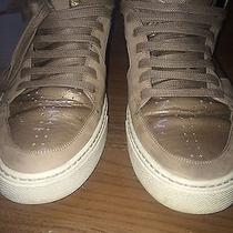 Ysl Sneakers Photo