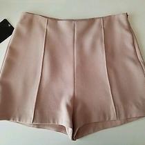 Zara Basic Collection High Waist Blush Pink Shorts Sz M Photo