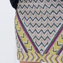 Zara Beaded Aztec Skirt Photo
